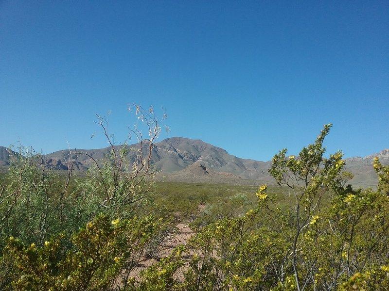 View of North Franklin Peak