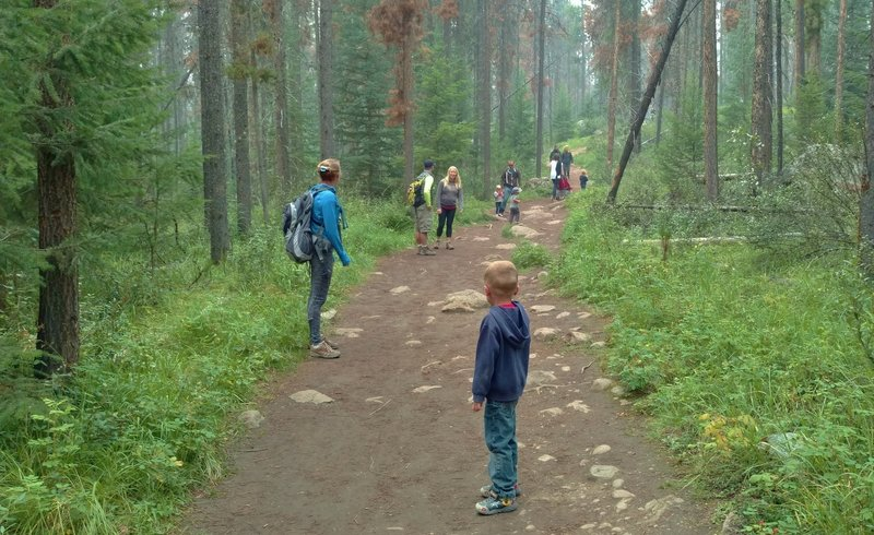 Popular with families and kids, Valley of the Five Lakes Trail goes through the fir forest to five lakes.