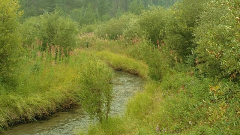 A small creek is crossed by Valley of the Five Lakes Trail.