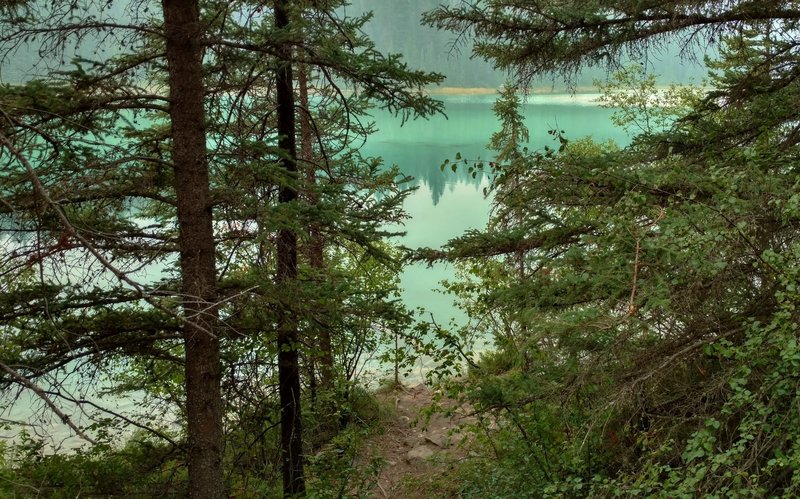 First Lake, one of five turquoise and blue green lakes visited by Valley of the Five Lakes Trail, is seen through the fir forest here.