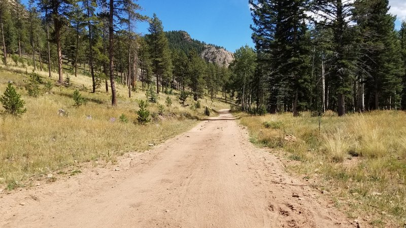 The trail widens to a road for a bit when you turn onto the Staunton Ranch Trail from the Border Line Trail