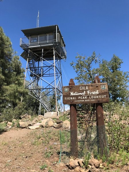 The lookout at the top--still staffed in fire season.
