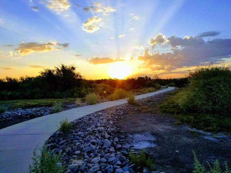 Sunrise at Wetlands