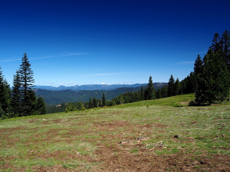 The view from the meadow on Anderson Mountain