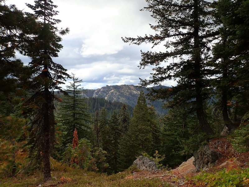 Jackass Mountain from the Divide Trail on Fish Mountain