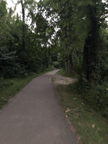 Typical paved trail
