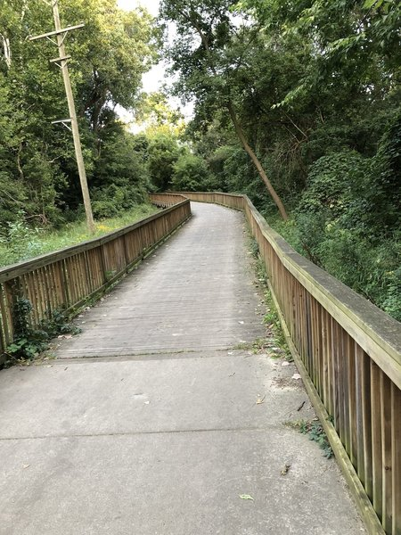Wood boardwalk over some wetlands