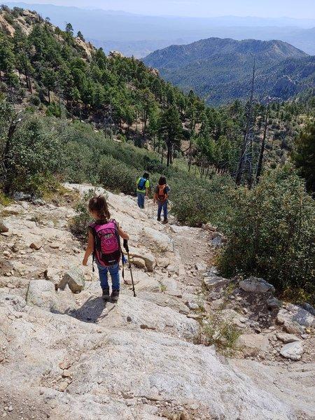 Knagge Trail #18