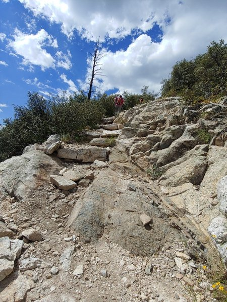 Panoramic lens on Knagge Trail #18; and it pretty well captures what you FEEL when you look up at that stack of rock stairs heading back to the trailhead. LoL