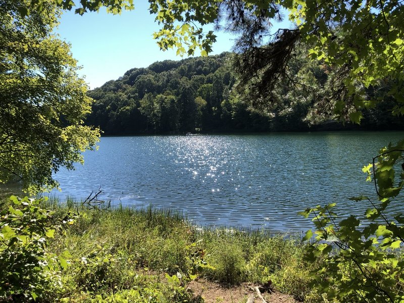 Looking over Greenbo Lake