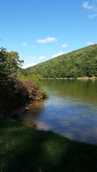 Beautiful view of the Allegheny from campsite #18