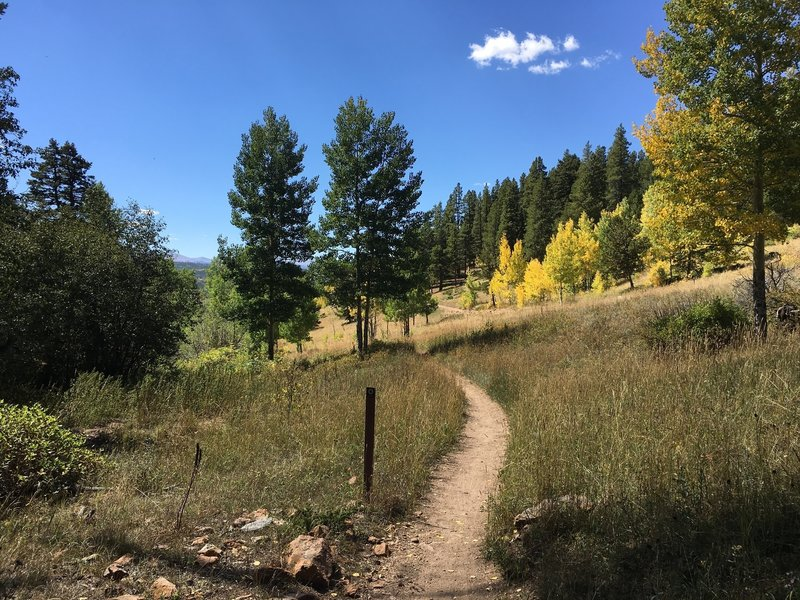 The last mile of the trail starts off a little grim: Mountain Base Road on your left, private property on your right. It eventually leads to a beautiful view of the valley.