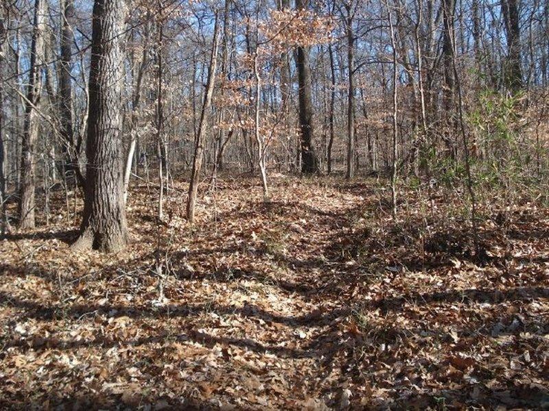 Woodland Trail (red loop)