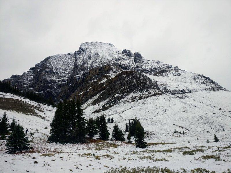 Late season on the alpine plateau near Wolverine Pass.