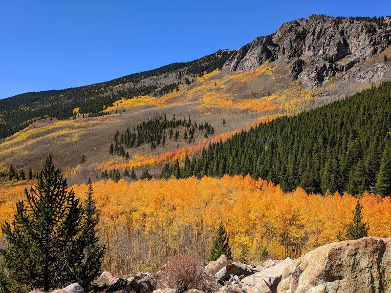 Aspen fall colors, 3 miles up the trail.
