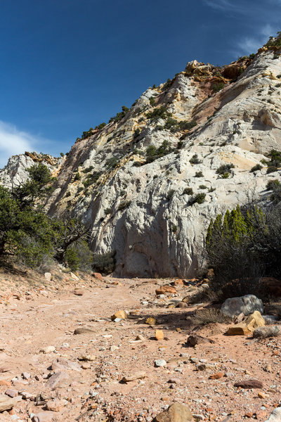 Dry creek bed of Red Canyon