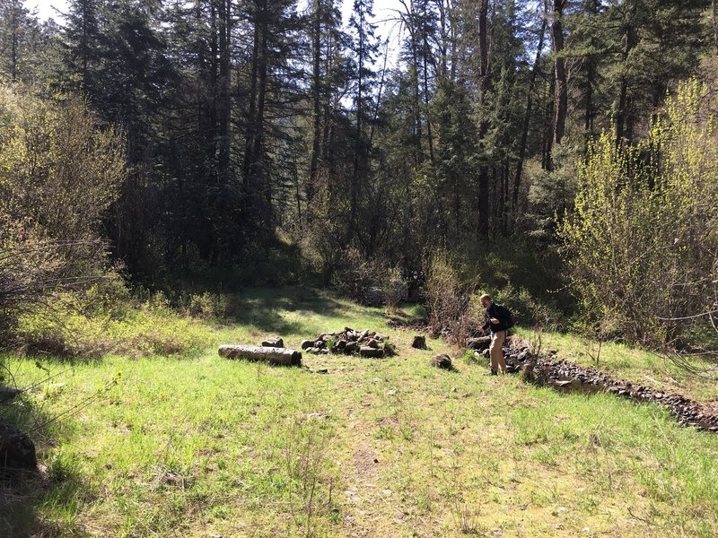An open picnic area about 100 yards from the trailhead.