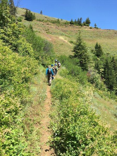 Hiking the upper trail Coyote Ridge.