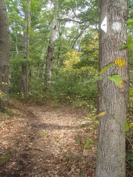 Beautiful fall day on the Wakazoo Trail