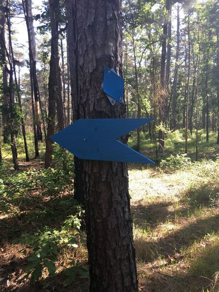 Typical Trail Markers