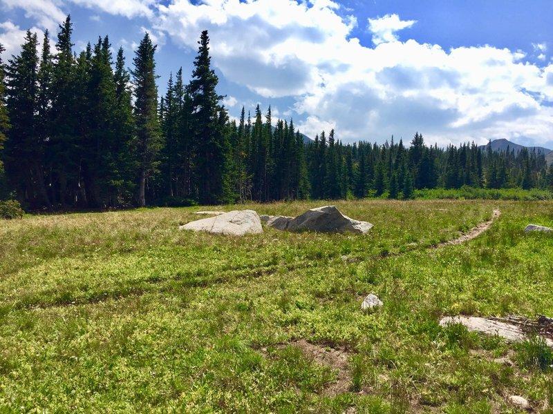 Plenty of camping spots by Devil Thumb Lake 08/07/18