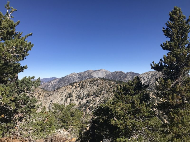View of Mt. Baldy from the Cucamonga Peak Trail