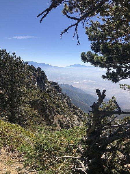 East of Cucamonga Peak on the trail to Etiwanda Peak