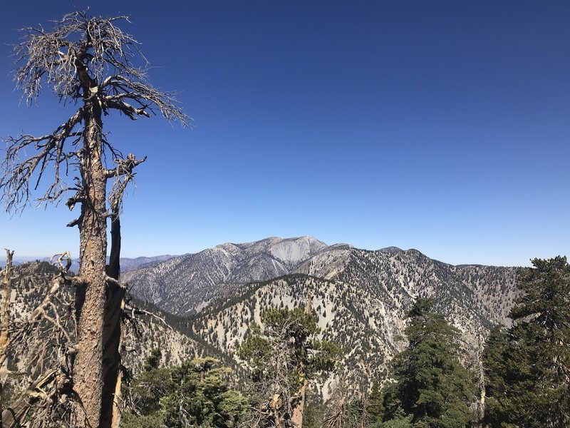 View to the north from Etiwanda Peak at Mt. Baldy. Icehouse Saddle, Timber and Telegraph Peaks also visible.
