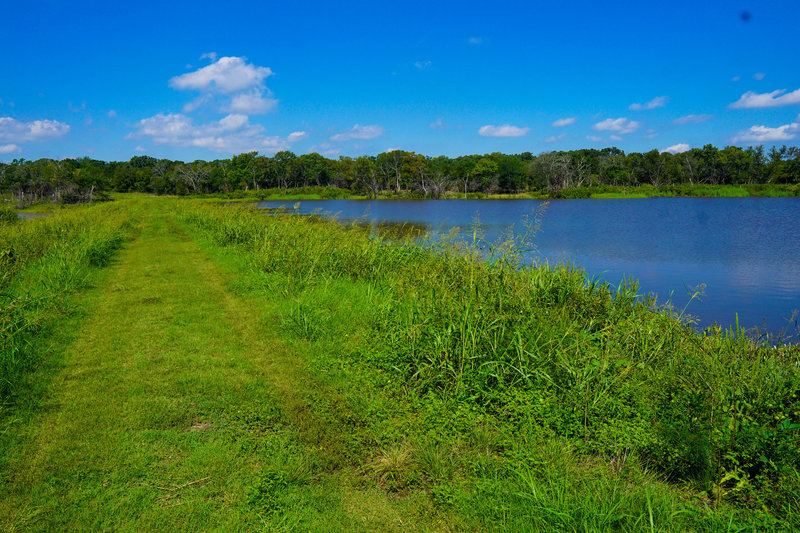 Your hike takes you ove a wide levee that seperates an overflow pond and Lake Texoma.