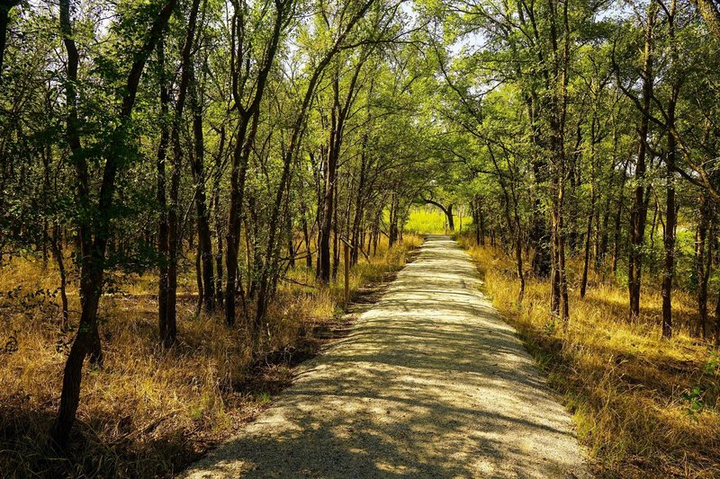The hard packed gravel surface of the ADA Trail helps create access for all.