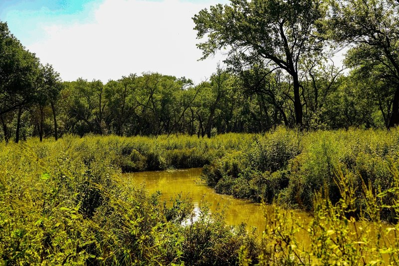 A small creek and wide marshy area provides some nice variation in scenery.