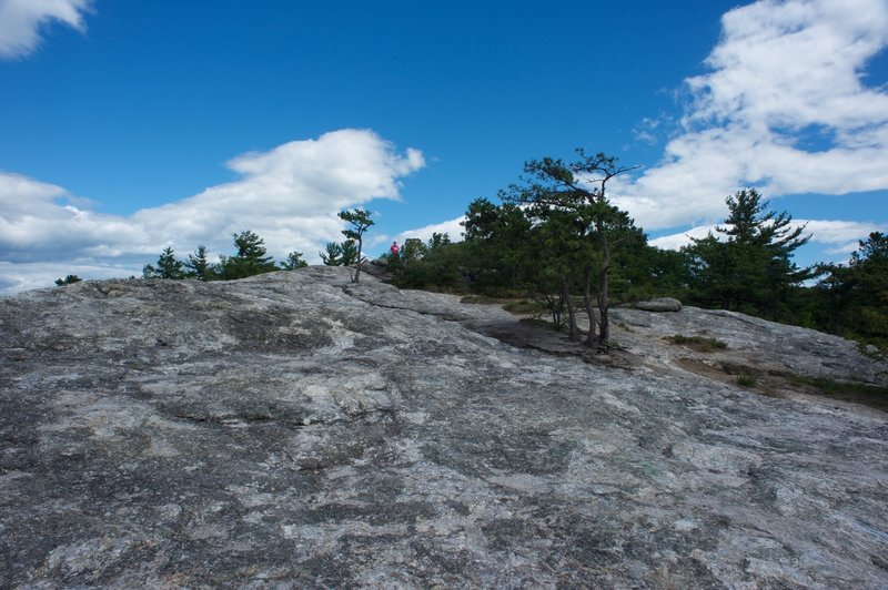 Looking at the summit of Jockey Cap after hiking over the top.  Take time to explore the summit and the views.