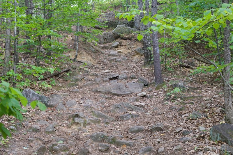 Toward the top, the trail gets rockier and a little more washed out.