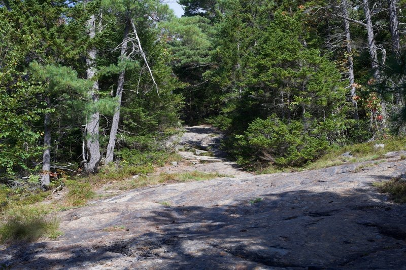 The trail crosses solid rock for a while, with blazes painted on the rock to show the way.
