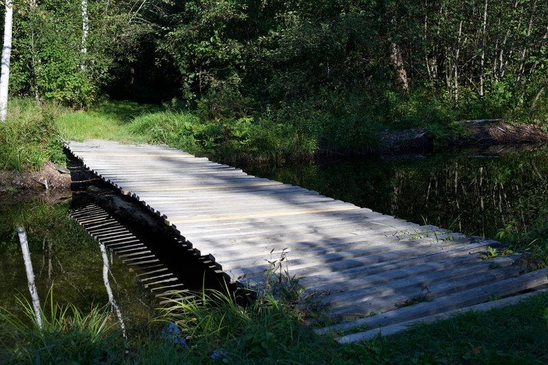 A wooden bridge crosses a stream that feeds into Shell Pond.