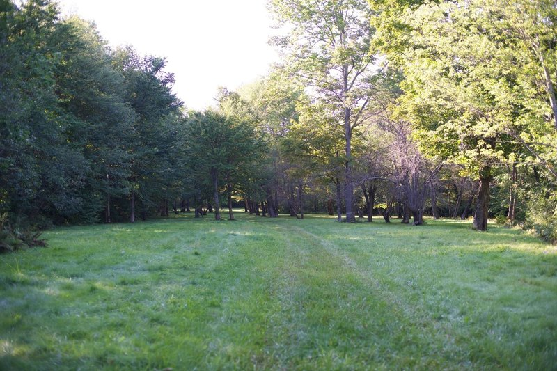 The trail makes its way through an Apple Orchard.