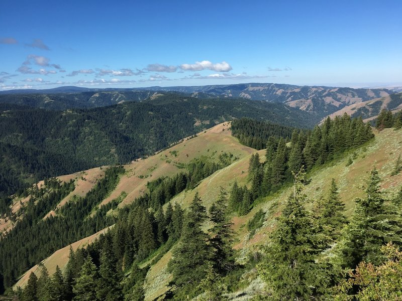 View from the upper trail of Coyote Ridge looking SW