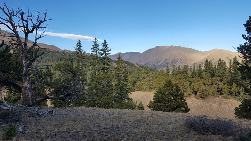summit before descending to Pine Creek (northbound)