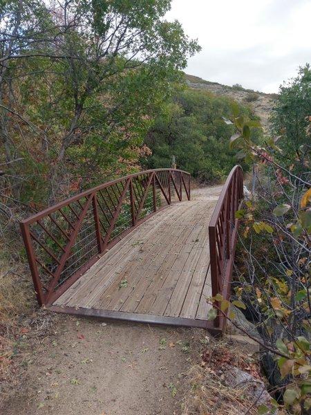 Nice bridge where the Aqueduct Trail and the Burnham Loop Trail meet