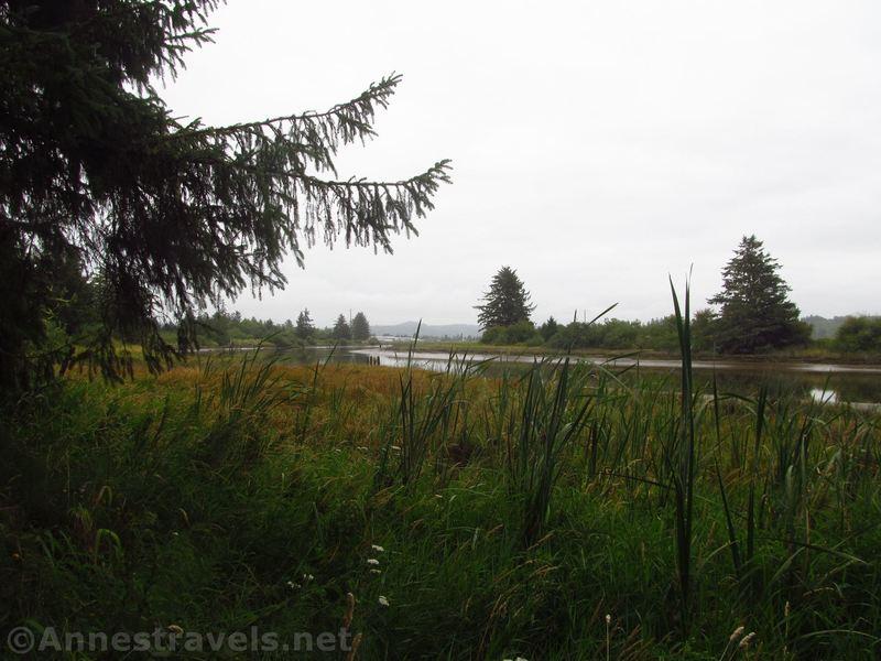 Along the Netul Landing Trail