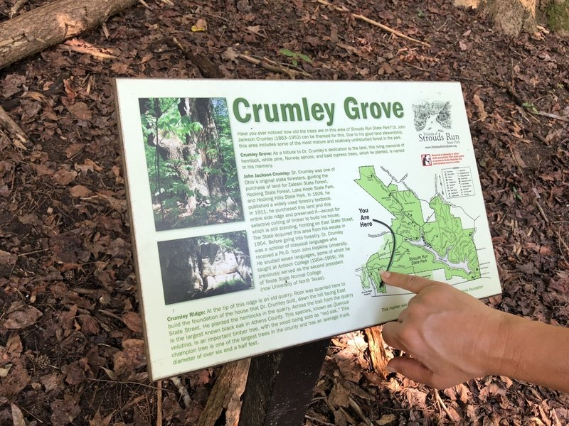 Crumley Grove Sign