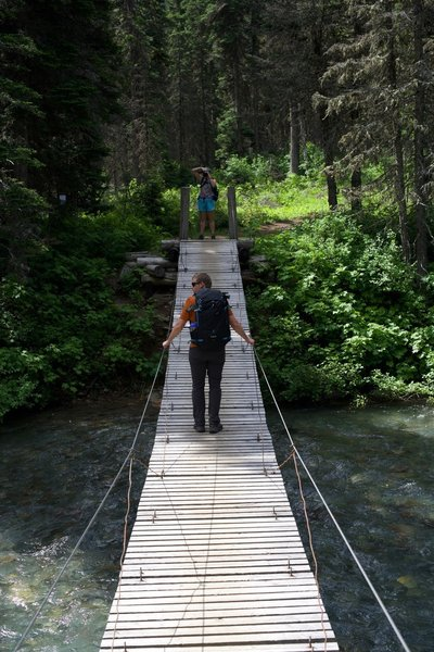 Crossing Reynolds Creek, a suspension bridge adds a little bit of excitement to the hike.