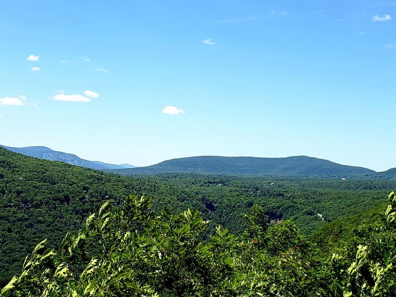 View from the Escarpment Trail