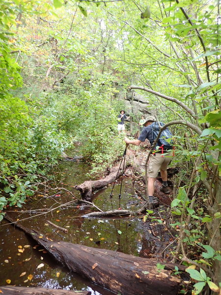 Crossing the easy part of north section of Terrace Pond Circluar