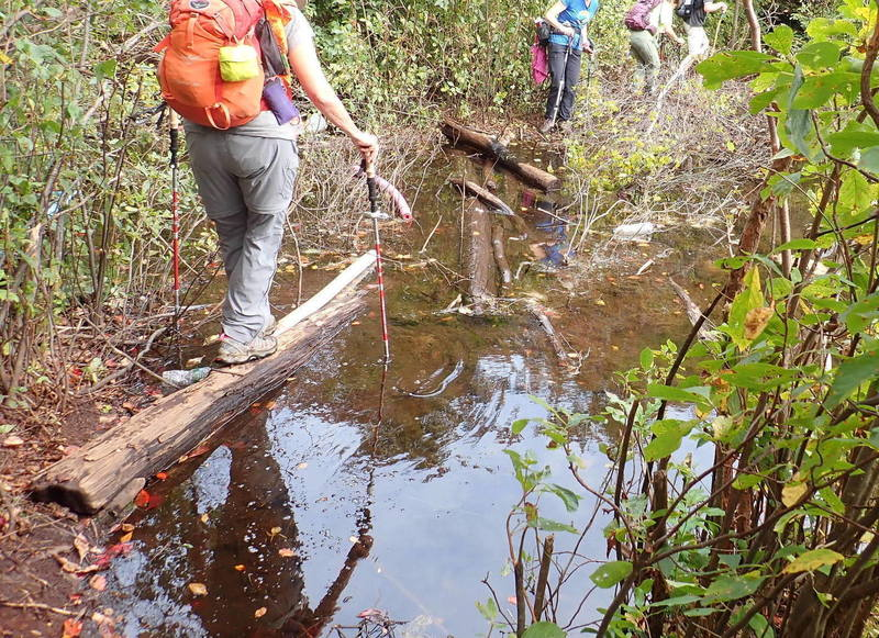 Carefully crossing Terrace Pond outflow on logs