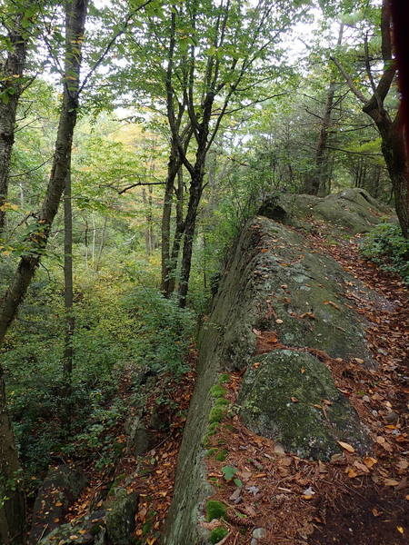 Example of Bearfort Ridge geology - rock layers are tilted in spots 90 degrees requiring hands and knees to traverse.
