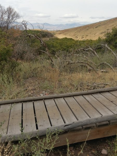 One of two small footbridges on Little Valley C Line trail