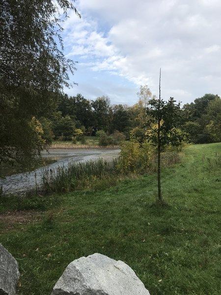 Pond at start location for Trail Jarnik