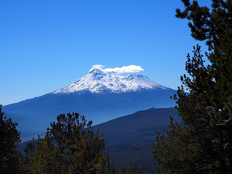 Mount Shasta from along the Goosenest Trail