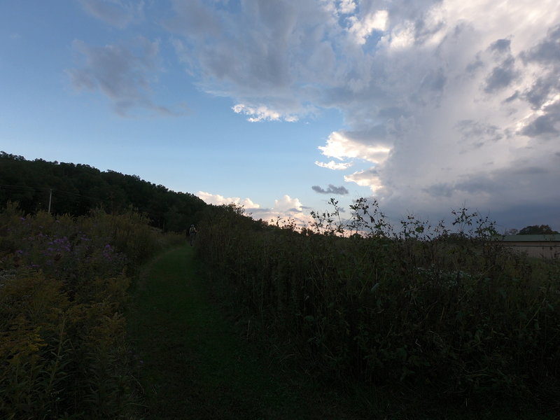 The entrance to the prairie and the Hawk Hill Loop.